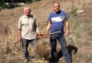Giuseppe e Agostino Barbiero, agricoltori – Jelsi